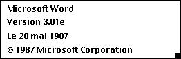 MS Word 301F